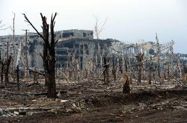Стало известно, какие потери понесли украинские военные с начала конфликта на Донбассе