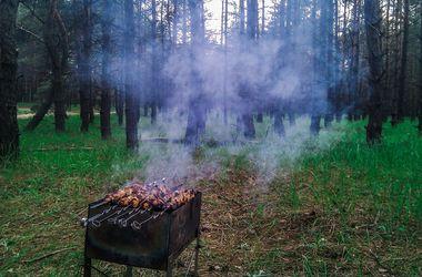Киeвлянам запретят ездить в лес на шашлыки