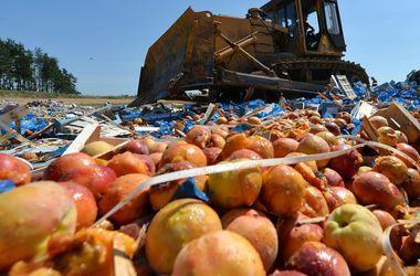 В аннексированном Крыму уничтожили почти две тонны санкционных овощей и фруктов