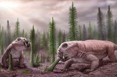 """Палеонтологи раскрыли """"секрет успеха"""" листрозавров"""