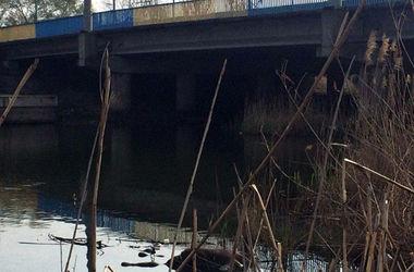 В Мариуполе под мостом нашли мертвую женщину
