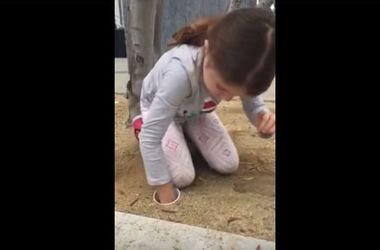 Видеохит: маленькая девочка спасла утят из сливной трубы