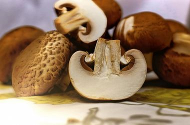 В Украине стали дорожать грибы