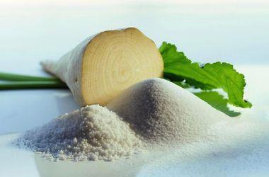 Украину ждет хороший урожай сахарной свеклы - USDA