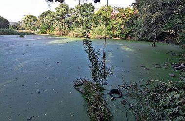 В Одессе пруды спасут от ядов