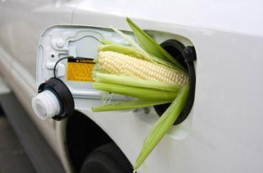В Украине хотят изменить состав бензина
