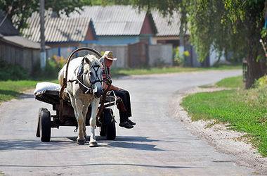 Бедные ленивые сельские жители и богатые немцы