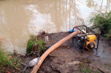 В Житомирской области обнаружены нелегальные прииски янтаря