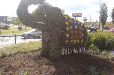 Возвращение слона: в Киеве коммунальщики обновили необычную скульптуру из цветов
