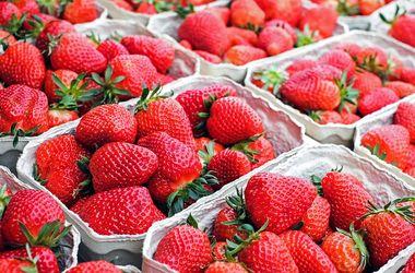 В Украине обвалились цены на овощи и фрукты