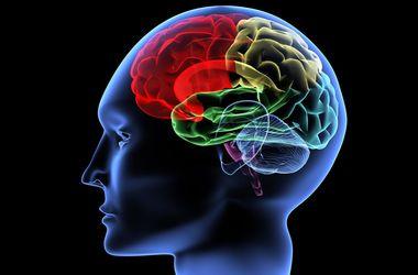 Как защититься от рака мозга