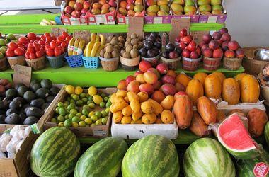 Россия готовит тотальный запрет овощей и фруктов из Турции