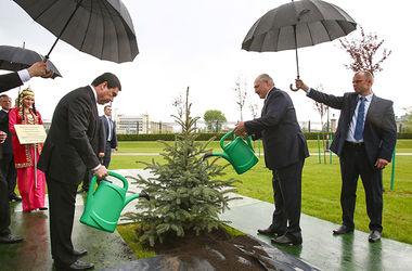 ФОТОФАКТ. Лукашенко вышел поливать елку в дождь
