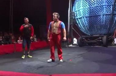 Видеохит: британца в цирке нокаутировал клоун (видео)