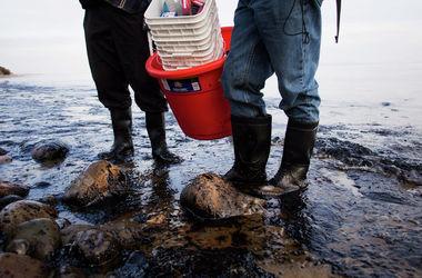 В Мексиканском заливе поизошла утечка нефти