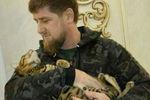 <p>У Кадырова пропала кошка. Фото: instagram</p>
