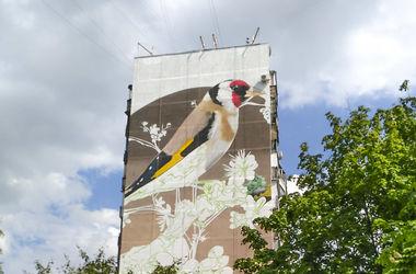 В Харькове на домах появятся огромные граффити с птицами