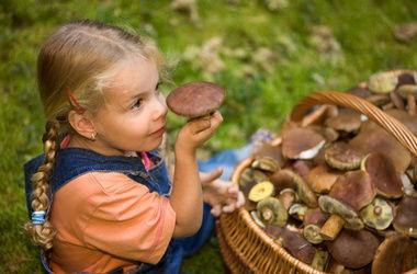 Семья в Запорожской области отравилась грибами из своего сада