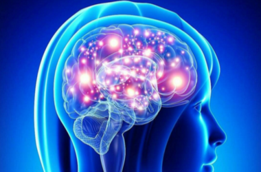 Ученые выяснили, почему из памяти уходят старые воспоминания