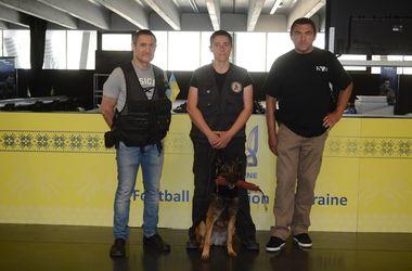 Собака-сапер обыскала украинский медиа-центр Евро-2016 во Франции