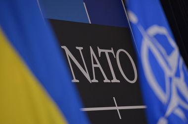 Украина не подавала заявку на членство в НАТО