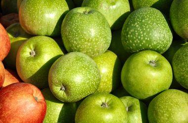 Непогода убивает урожай яблок в Молдове