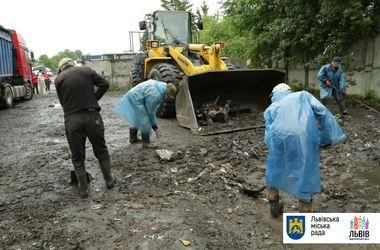 """Куда девать львовский мусор: причины, последствия и выход из """"грязного"""" скандала"""