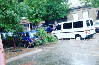 Дождь и шквальный ветер потрепали Измаил: затоплены улицы и поваленные деревья
