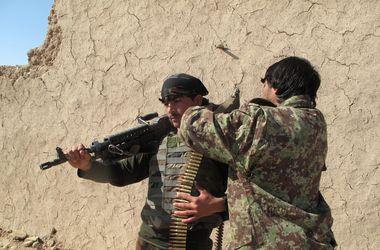 Талиб-смертник случайно подорвал 11 коллег