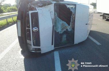 В Ровенской области микроавтобус переехал телегу: погиб извозчик и лошадь