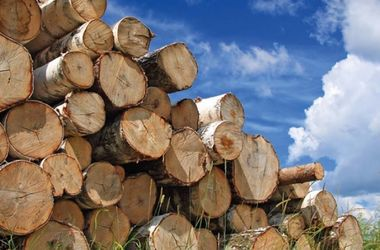 Украинец создал трактор, работающий на дровах