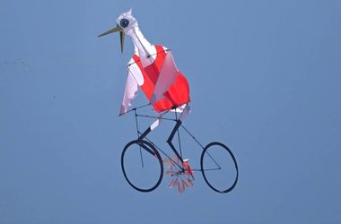 Видеохит: в небо запустили цаплю на велосипеде