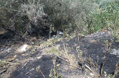 В Николаевской области горела свалка