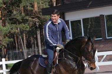 Онищенко продал своих лошадей – Bild