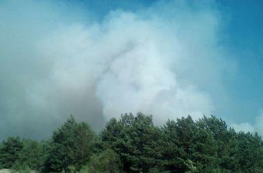 В Чернобыльской зоне пылает лесной пожар