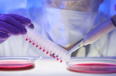 Медики обнаружили новое опасное свойство вируса Зика