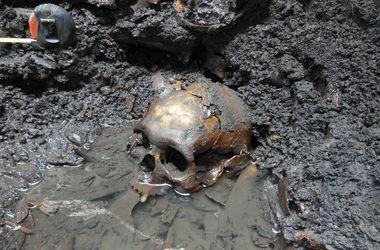 В Дании нашли череп пришельца