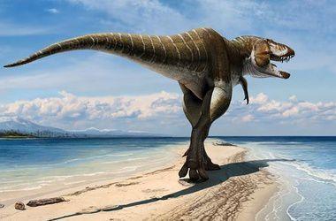 В Боливии найден гигантский след динозавра