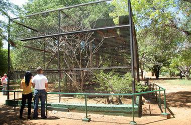 От голода в венесуэльском зоопарке погибли 50 животных