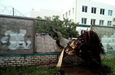 Стихия в Харькове: крыша повредила автомобили, а дерево разрушило бетонный забор