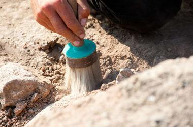 Археологи в Китае обнаружили бутылку 1600-летнего вина