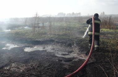 Под Киевом потушили торфяной пожар