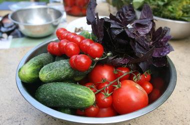 В Украине резко подорожали помидоры и огурцы