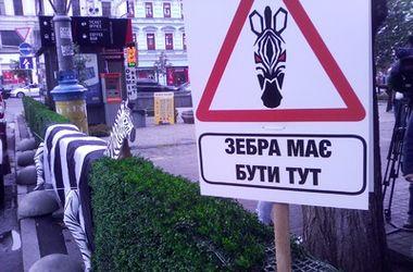 В Киеве на Бессарабке появилась пластиковая зебра
