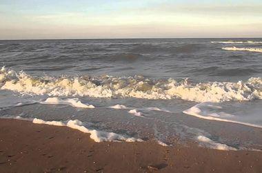 На берег Азовского моря вынесло мертвое тело