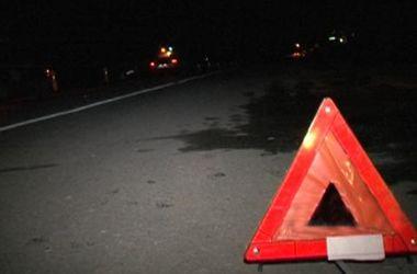 В Житомирской области микроавтобус насмерть сбил пешехода в темноте