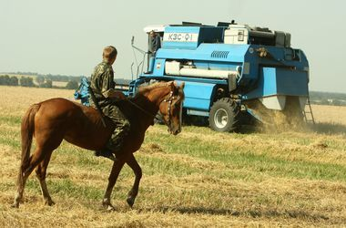 Кабмин планирует поддерживать малое и среднее фермерство