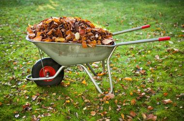 ТОП главных забот дачника в октябре: как правильно убрать урожай на хранение и избавиться от личинок
