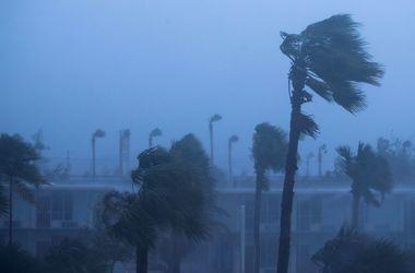 """Более миллиона жителей Флориды остались без света из-за урагана """"Мэтью"""""""