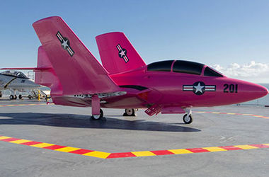 В США истребитель выкрасили в розовый цвет